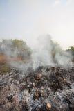 Лесной пожар или лесной пожар в природе, пожарные будут воевать огонь Стоковые Изображения RF