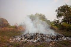Лесной пожар или лесной пожар в природе, пожарные будут воевать огонь Стоковые Фото