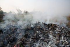 Лесной пожар или лесной пожар в природе, пожарные будут воевать огонь Стоковая Фотография