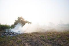 Лесной пожар или лесной пожар в природе, пожарные будут воевать огонь Стоковая Фотография RF