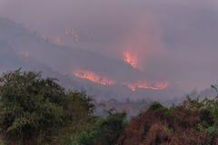 Лесной пожар на горе, Таиланд стоковые фото