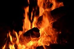 Лесной пожар Стоковые Изображения RF