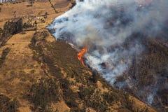 Лесной пожар стоковое изображение