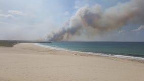 Лесной пожар Tuncurry стоковое фото