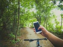 Лесные деревья пути рулевого колеса велосипеда Стоковые Фотографии RF