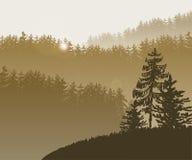 Лесные деревья BG бесплатная иллюстрация