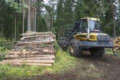 Лесохозяйство в Финляндии стоковое фото rf