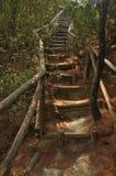 Лестница вверх по скале Стоковые Изображения RF
