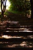 Лестница вверх по холму Стоковое Изображение