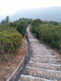 Лестница вниз с утеса Стоковые Изображения RF