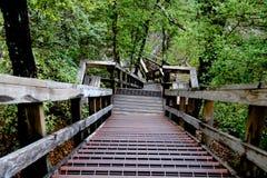 Лестница вниз Стоковое Изображение