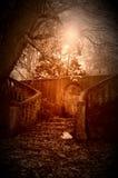 Лестница в саде Стоковые Изображения RF