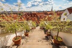 Лестница в саде Ledeburg Стоковая Фотография