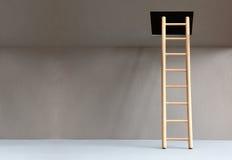 Лестница в люке Стоковое фото RF