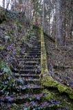 Лестница к нигде Стоковые Фото