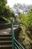 лестница парка Стоковое Фото