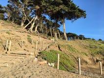 Лестница песка на пляже хлебопека, 8 Стоковые Фото