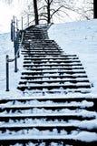 Лестница при покрытый снег стоковая фотография