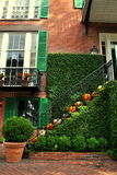 Лестница хеллоуина Стоковое Изображение RF