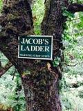 Лестница Jacobs предупреждая крутые шаги Стоковые Изображения RF