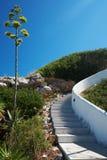 Лестницы водя вверх Лестница водя вверх Стоковое фото RF