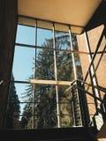 Лестницы водя к глуши Стоковые Фотографии RF