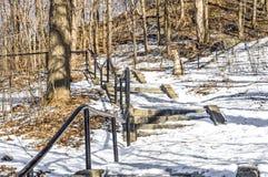 Лестницы в парке Mont королевском, Монреале стоковое фото