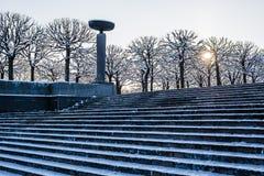 Лестницы в снеге Стоковые Изображения
