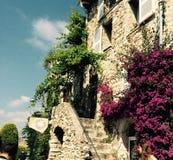 Лестницы в цветени стоковые изображения rf