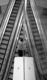 лестницы завальцовки Стоковое Изображение RF