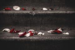 Лестницы и розы Стоковая Фотография RF