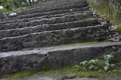 Лестницы к верхней части горы около виска стоковые фотографии rf