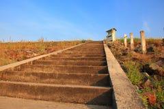 Лестницы к верхней части Стоковые Изображения