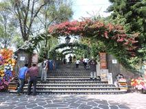Лестницы к раю Стоковые Изображения