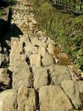 Лестницы наклона террас проходят через trekking трассу Стоковые Изображения RF