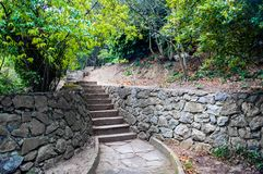 лестницы парка стоковые изображения rf