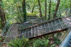 Лестницы посадки орла стоковые изображения rf