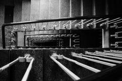 Лестницы прихожей в историческом доме черно-белом Стоковое Фото