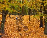 лестницы девушки маленькие сидя Стоковое фото RF