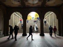 Лестницы Central Park Стоковая Фотография