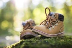Лес ботинка младенца Стоковая Фотография
