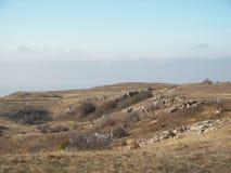 Лес весны в утре в крымских горах стоковое фото