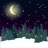 Лес вечером с вектором сосен иллюстрация вектора