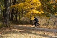 Лес велосипедиста городской в падении Мичигана Стоковые Изображения RF