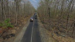 Лес вида с воздуха акции видеоматериалы