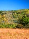 Лес Висконсин положения морены чайника стоковая фотография rf