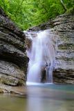 Лес водопада весной стоковые фотографии rf