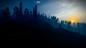 Лес в горах на переводе сумрака 3d иллюстрация штока