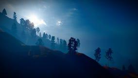 Лес в горах на переводе сумрака 3d иллюстрация вектора