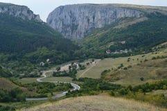 Лес в горной области, Transilvania, Румыния Стоковые Изображения RF